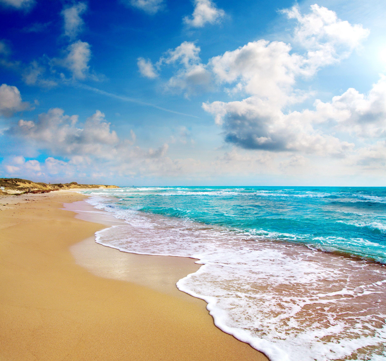 Florida Beach Horizon Flip Flops