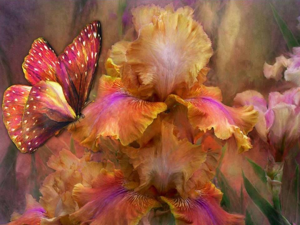 Pin by nelson murgado on carol cavalaris fantasy artist butterfly and flowers pretty art flowers butterfly mightylinksfo