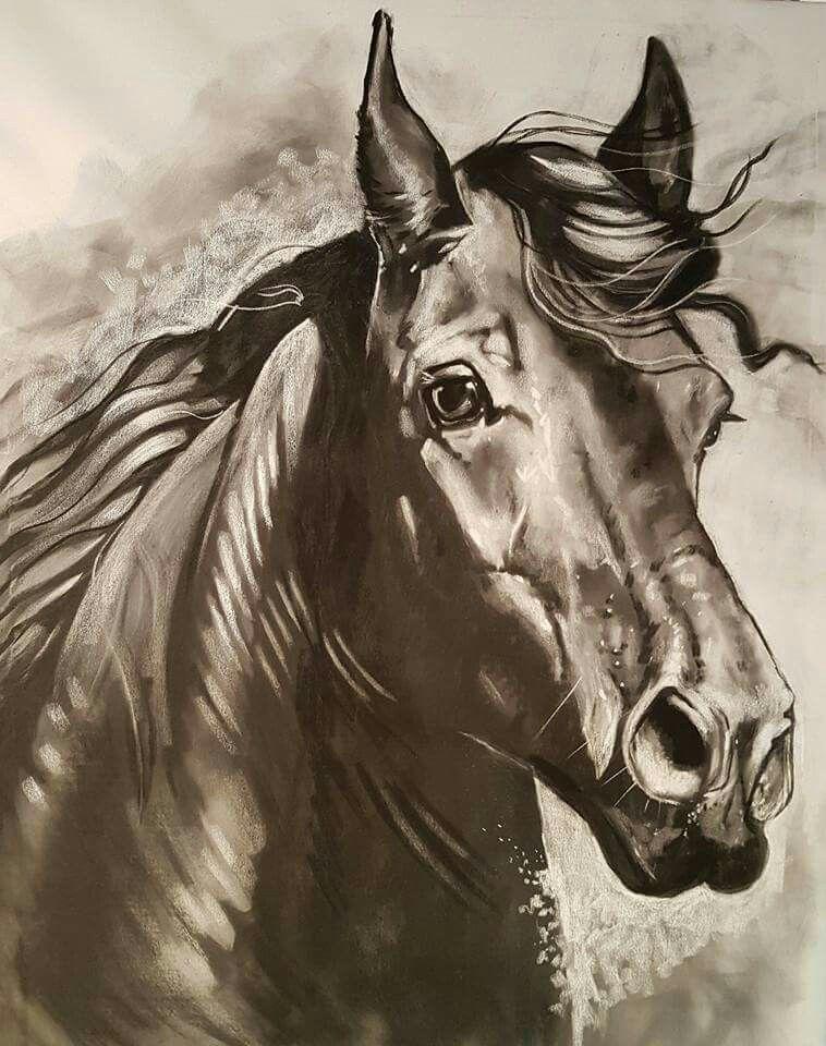 friesian horse dressage art charcoal