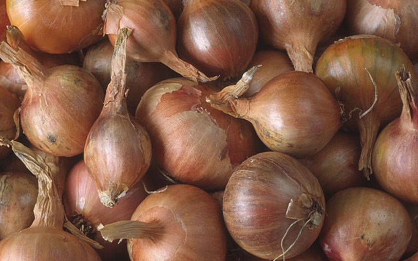 Onions cost the same to grow as to buy, but some types are worth going the   extra mile