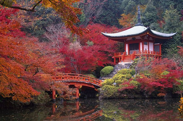 If You're Looking For A Serene, Exotic Land: Kyoto, Japan Kyoto is a peaceful oasis that's well worth the long trip from the States.