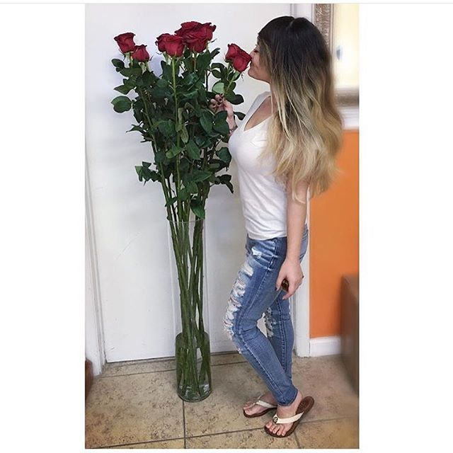 Stop Smell The Roses Image Via U Ahoe Dats Why I On Instagram Theultimaterose Com Theultimaterose Rose Delivery Buy Roses Colorful Roses