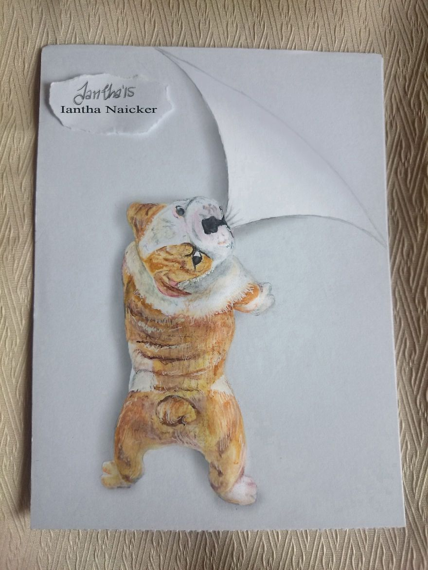 My Animal Drawings Try To Leap Off The Page | Simple inspirations ...