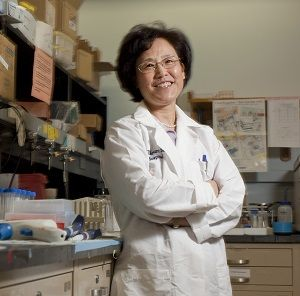 Dr  Li and Her Chinese Herbal Remedies | Health | Herbal