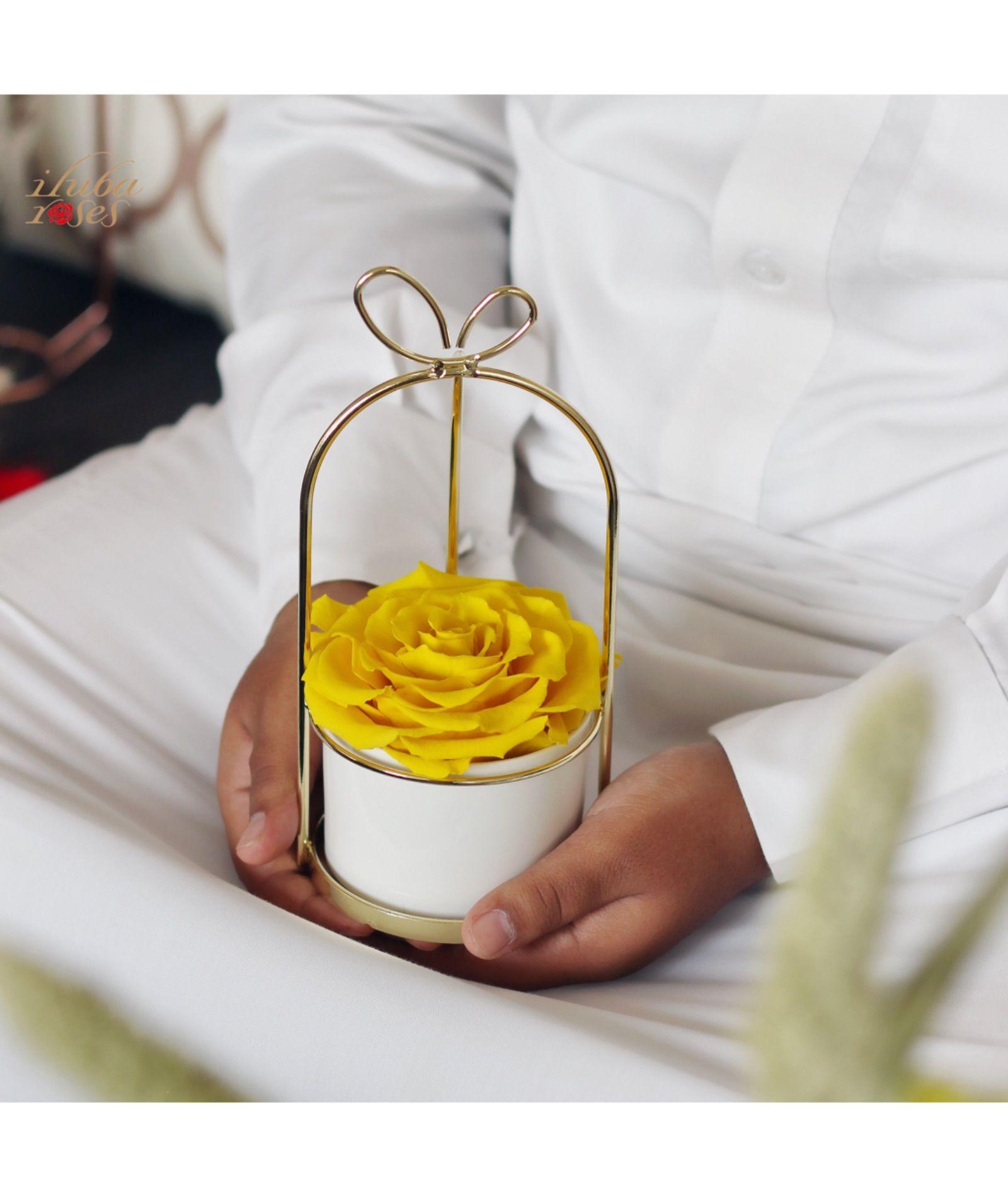صور ورد للمرتبطين وباقات زهور متنوعة وخلفيات ورود مذهلة موقع مصري Rainbow Roses Blue Roses Beautiful Roses