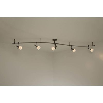 Features Clear Halophane Accommodates 5 X 50 Watt Gu10 Xenon Included Fixture Material Track Lighting Kits Track Lighting Fixtures Track Lighting