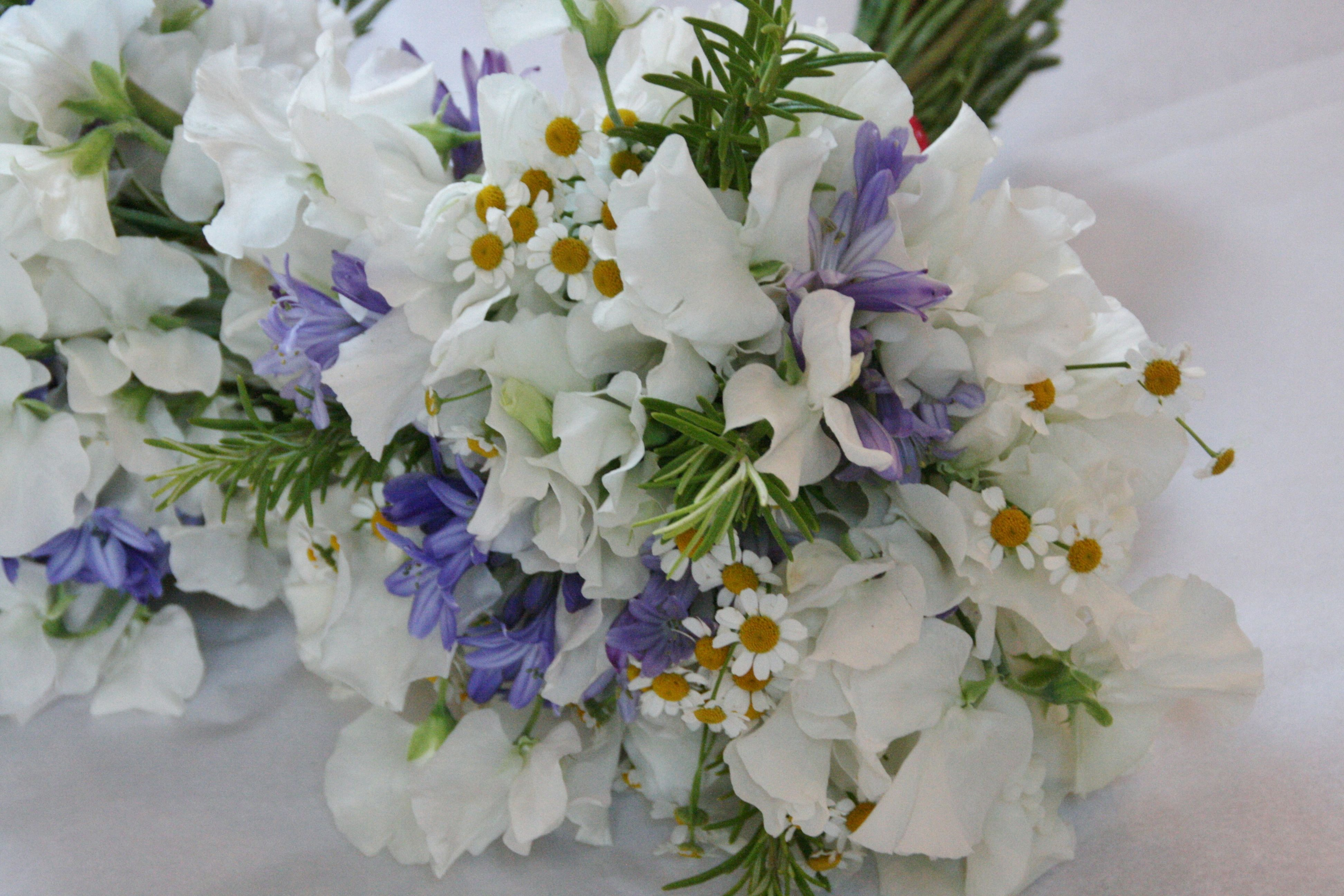 Daisies, White Sweet Pea And Agapanthus In 2019