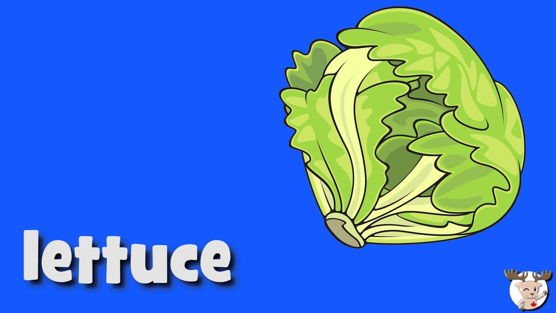 Learn Vegetables Vocabulary