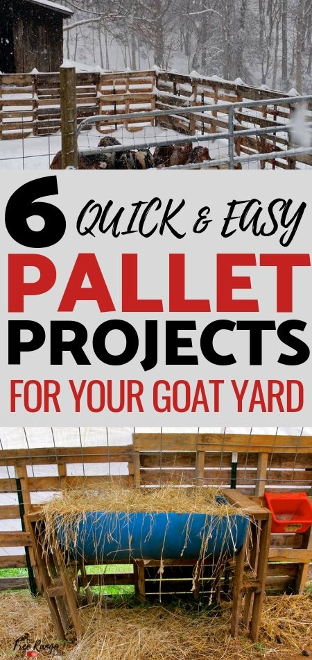 6 Easy Pallet Projects for Your Goat Yard | Wooden pallet ...