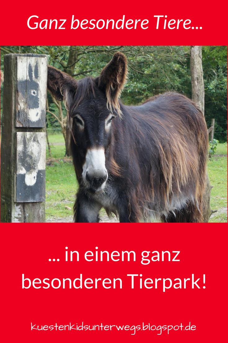 Naturgenuss pur: Der Tierpark Arche Warder. Wir haben im Rahmen des ...