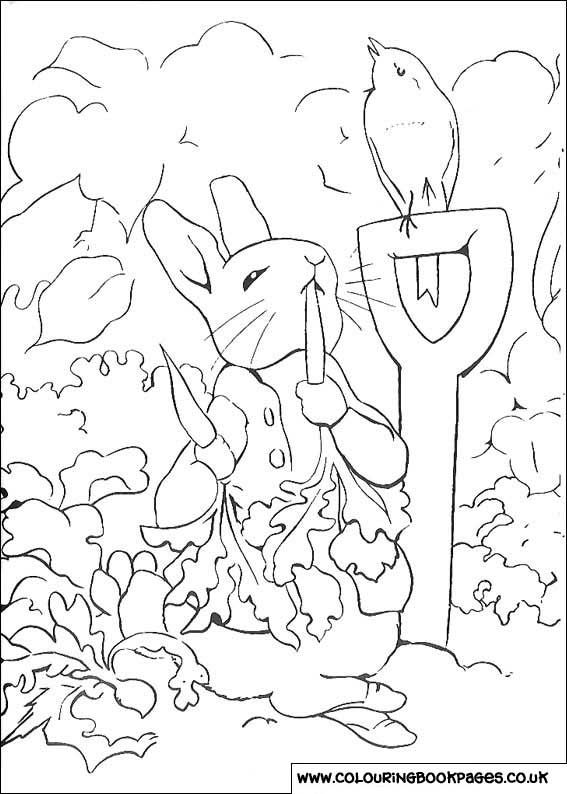 Peter Rabbit Colouring Pages Rabbit Colors Peter Rabbit