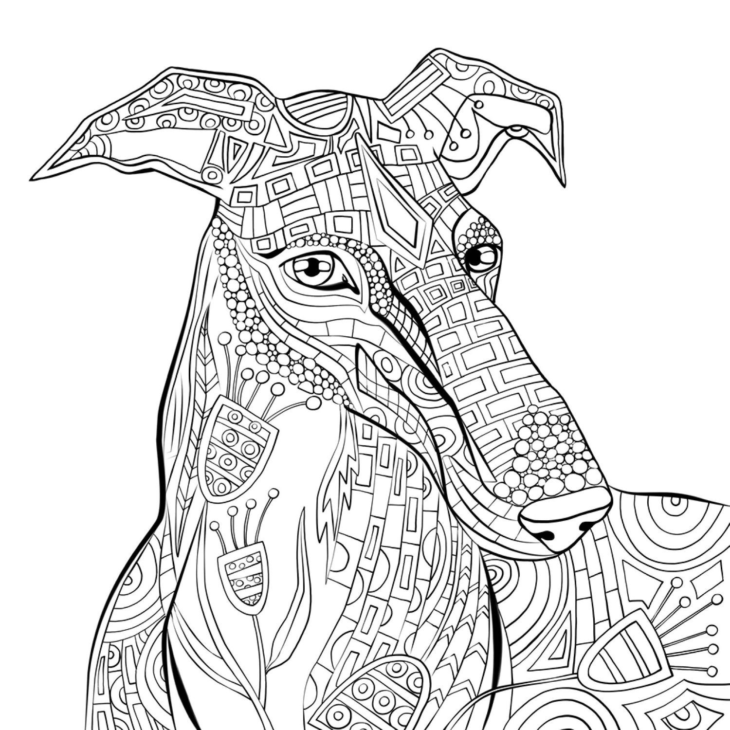 Free Adult Coloring Pages Greyhound Coloring Pages Adult