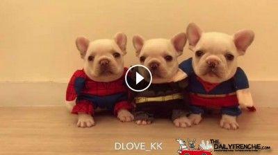 Kleine aber große Superhelden..