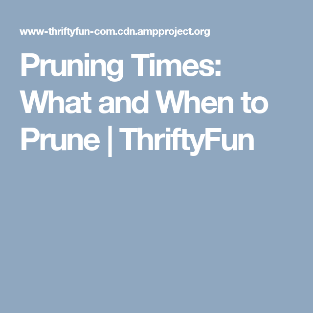 Pruning Times: What and When to Prune | ThriftyFun