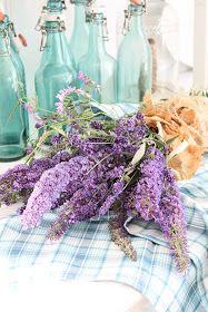Nettopp på denne tiden blomstrer mine vakre blå lilla planter i hagen, Lavendel og sommerfugel buskene setter virkelig preg på hagen. Hv...