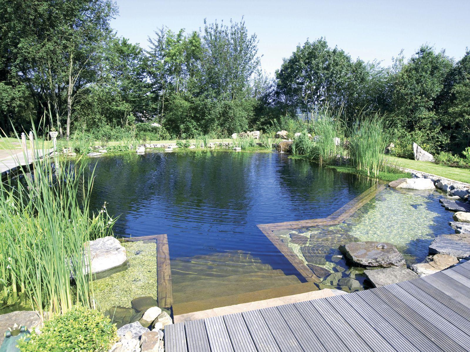 Schwimmteich natural pool natural pool schwimmteich pool ideen natur pool und teich - Poolanlagen im garten ...