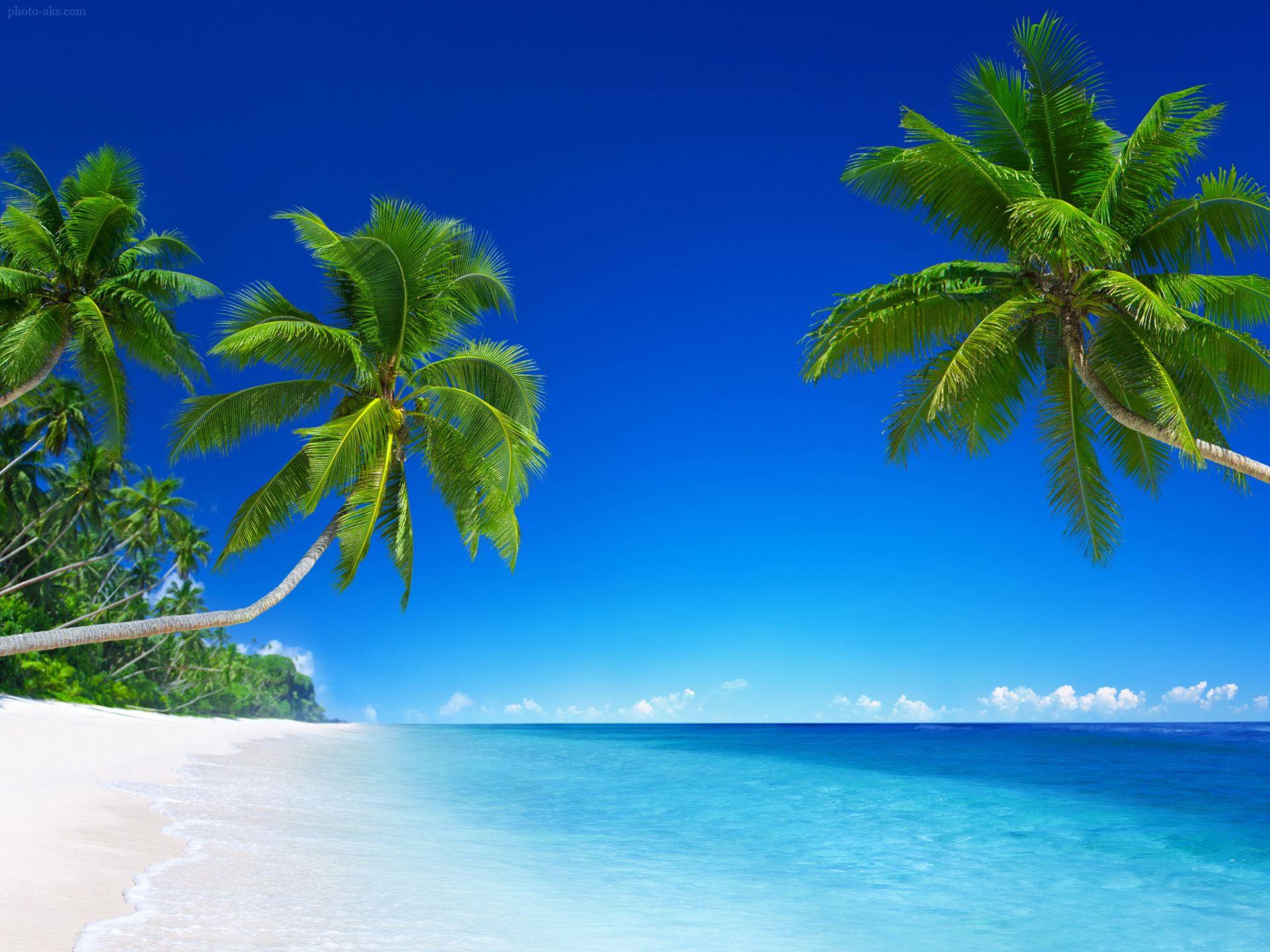 منظره زیبا سواحل آرام استوایی Beach wallpaper, Tropical