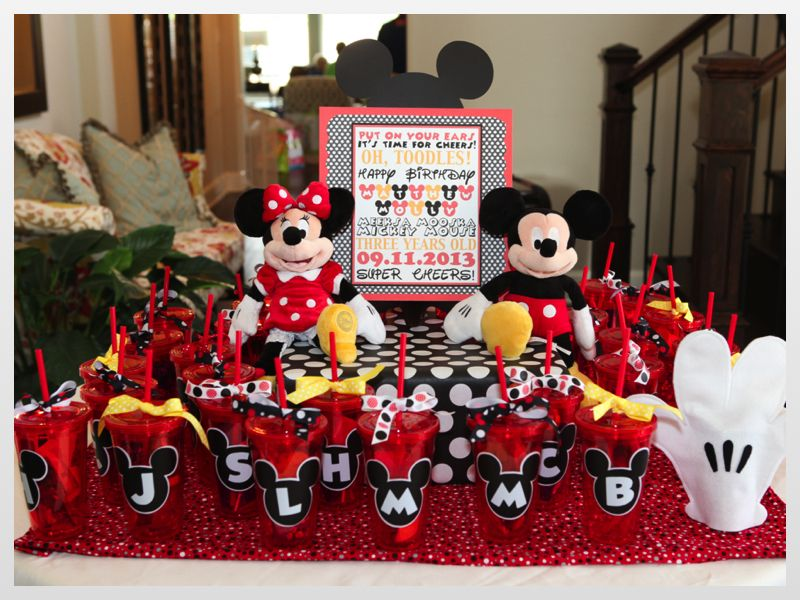 Twin Boy/Girl MICKEY & MINNIE MOUSE Birthday Party