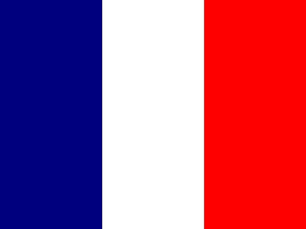 Fabuloso Flag of France | My style | Pinterest | Bandeiras mundiais, Mundo  TC02