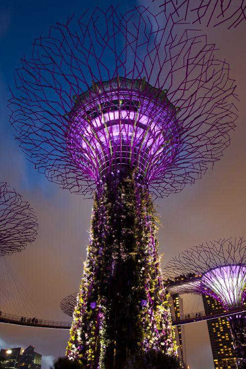Singapore Inspiration_6