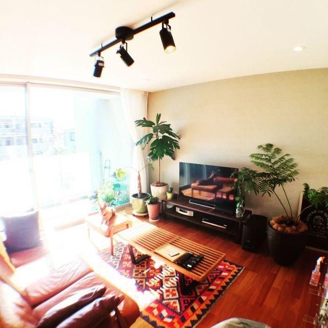 Tomoyaさんの、リビング,観葉植物,ナチュラル,ペット,ソファ,カフェ風,湘南,のお部屋写真