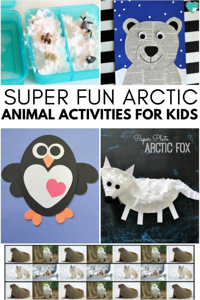 Super Fun Arctic Animal Activities For Kids Animal Activities For Kids Polar Animals Preschool Arctic Animals Preschool [ 1200 x 800 Pixel ]