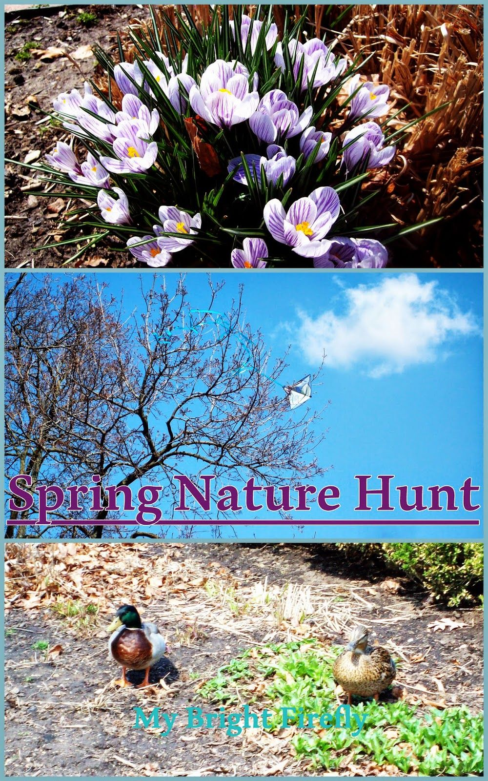 Spring Nature Hunt, from My Bright Firefly. Part of the Outdoor Play Challenge, hosted by Building Blocks and Acorns