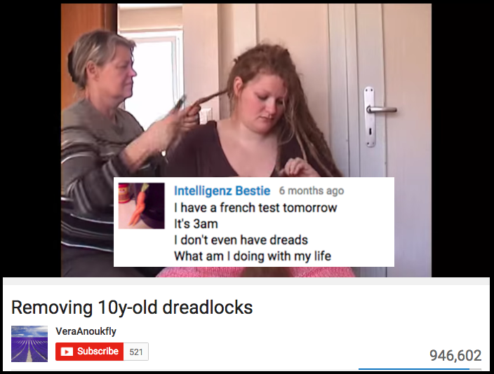 20 Best Youtube Comments Ever Funny Youtube Comments Youtube Comments Dog Crying
