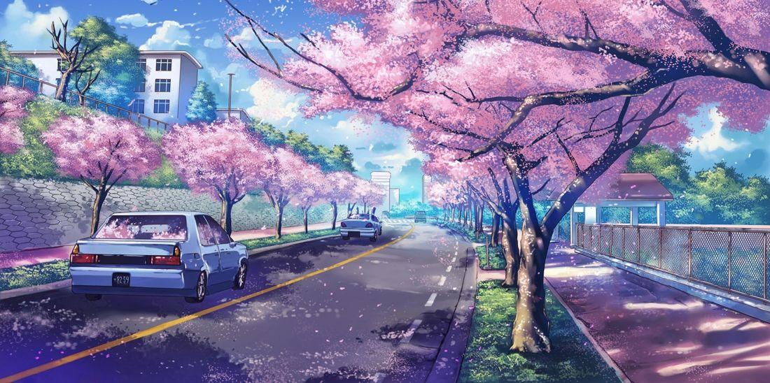 Flor de Cerezo anime en ciudad actual.