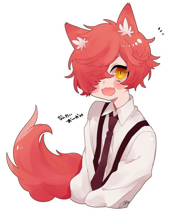 Cute Fox Boy Anime Fox Boy Anime Boy Base Fox Boy