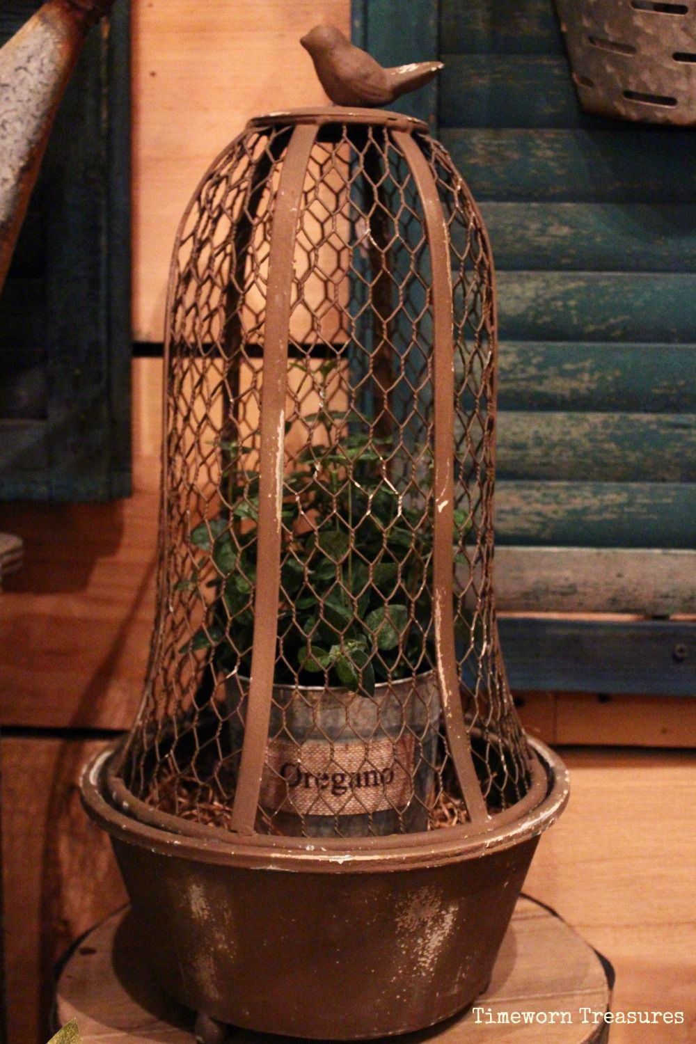 Rusty chicken wire bird cloche with lifelike potted herb Spring ...