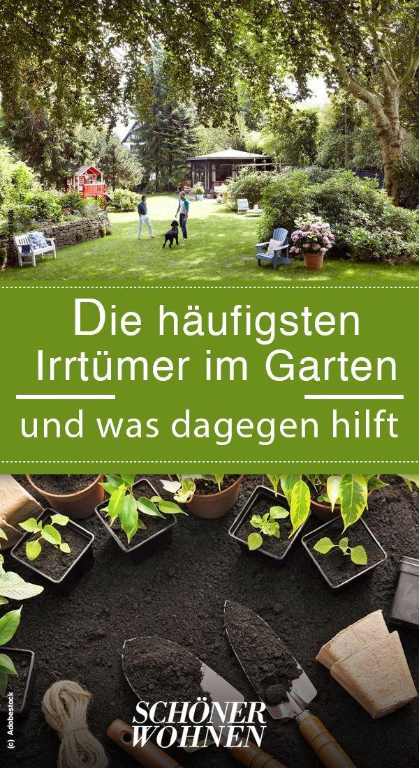 13 Irrtumer Rund Um Den Garten Pflanzen Brauchen Besondere Pflege