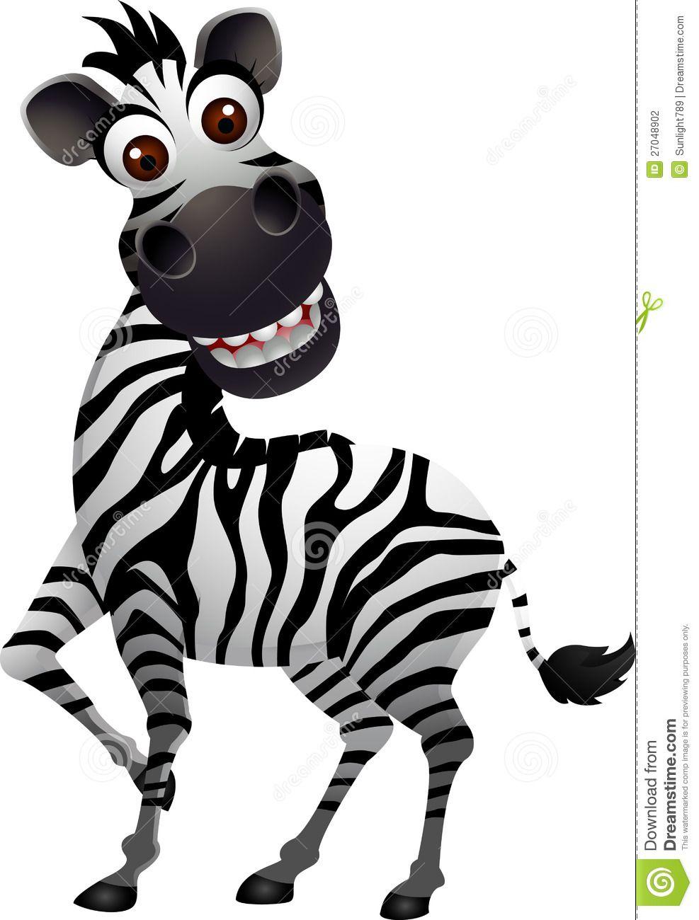 Funny and Cute Zebra Funny zebra cartoon Zebra