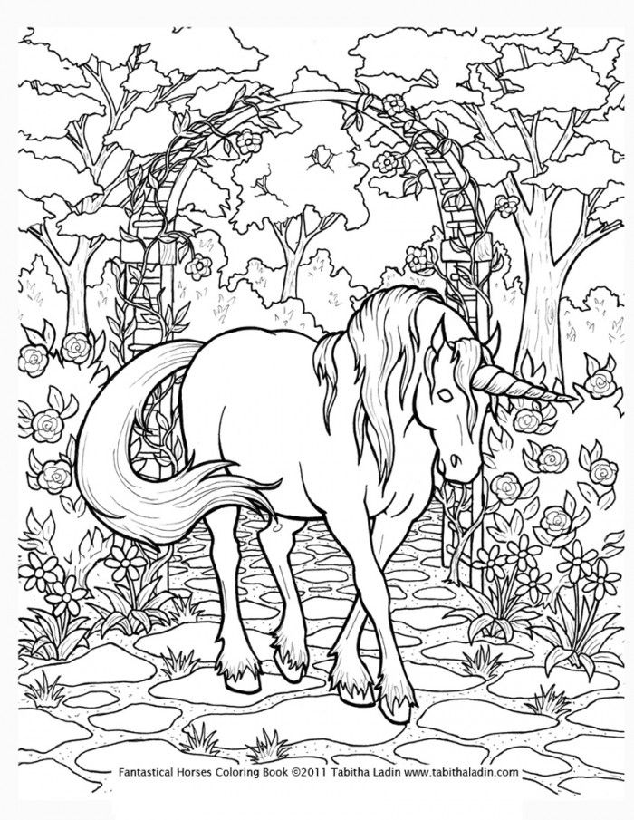 hard coloring pages of unicorns 08 - Challenging Animal Coloring Pages