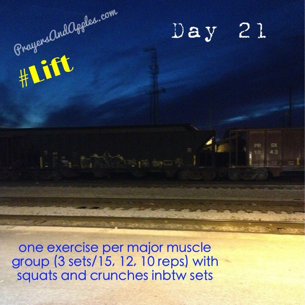 Day 21: one exercise per major muscle group (3 sets/15, 12, 10 reps) with squats and crunches inbtw sets