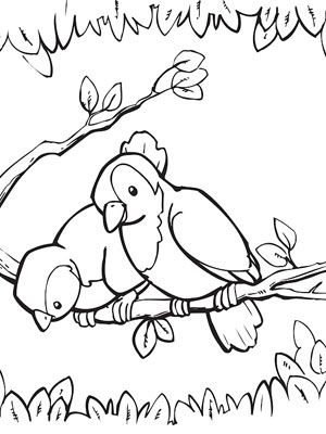 Printable Spring Coloring Pages | Easter | Pinterest | Spring, Bird ...