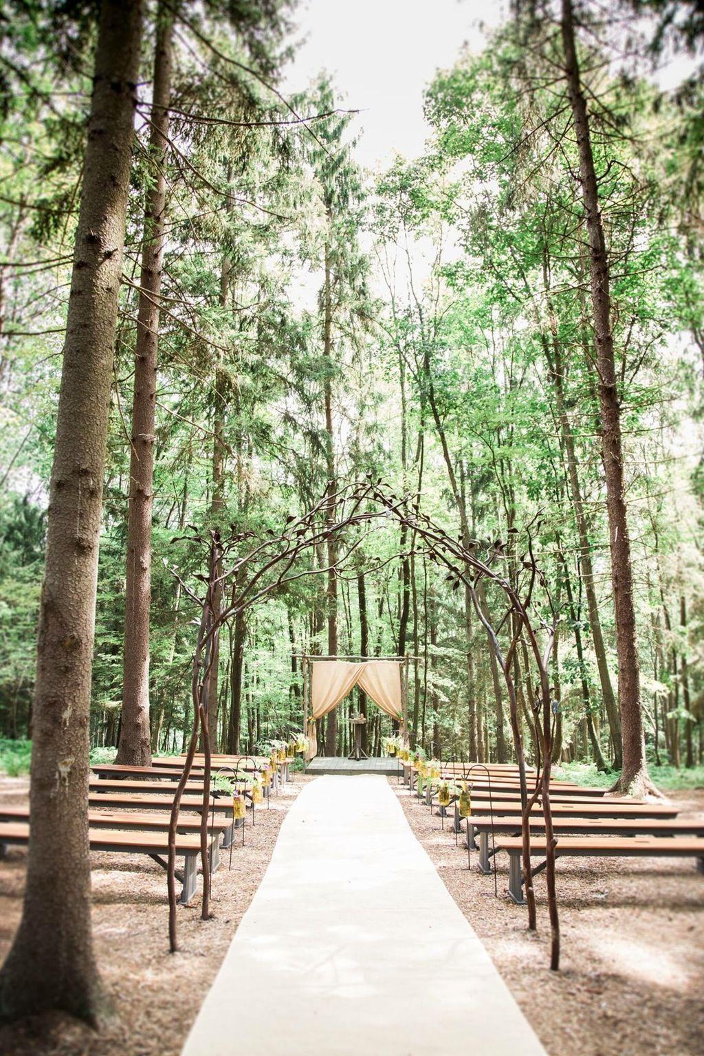 Be Moon Rising, Deep Creek Lake, MD   Woodland wedding ...