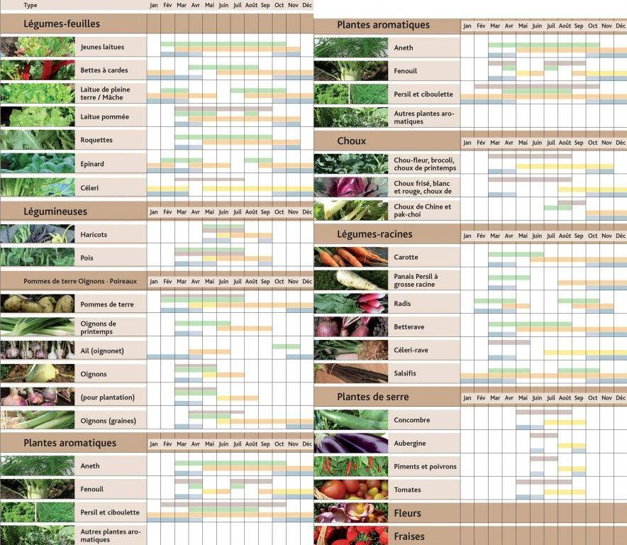 calendrier de plantations sous serre jardin pinterest