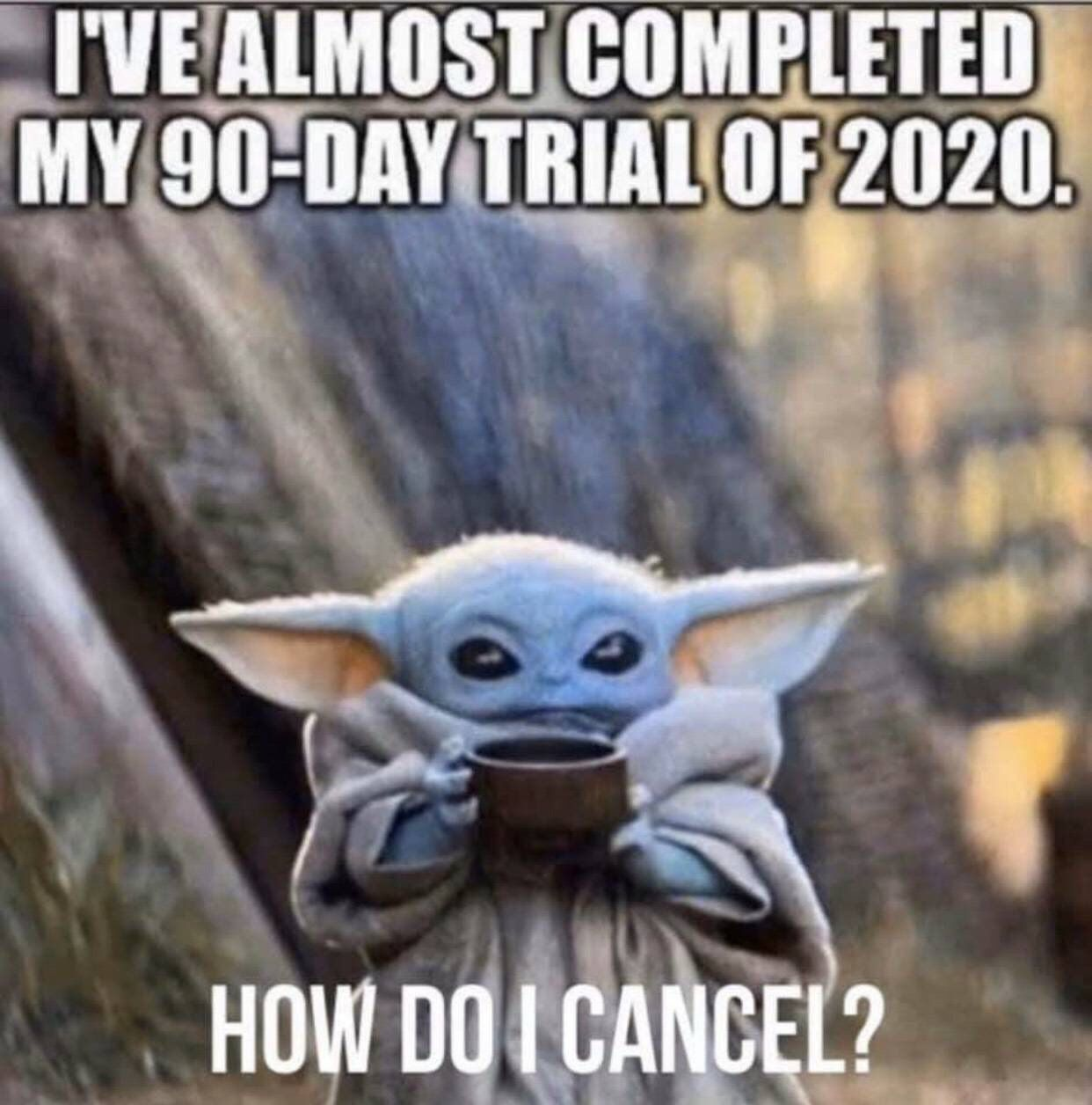 Pin By Sammiiknowsbest On Memes Yoda Funny Memes Funny Pictures