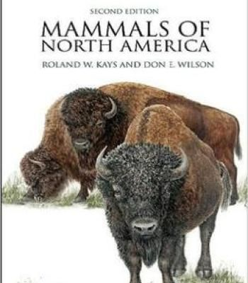 Mammals Of North America: Second Edition PDF