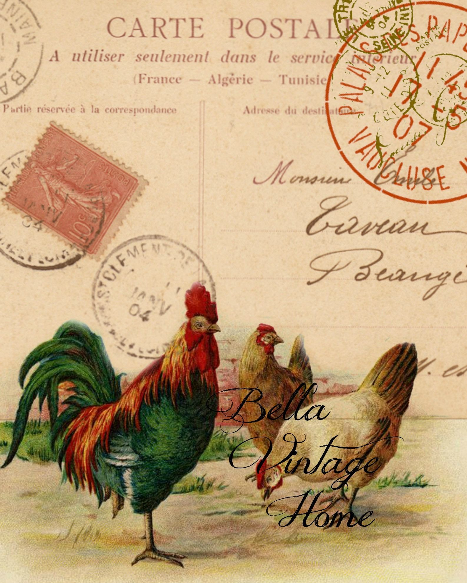 Arte France Adresse Carte Postale Rooster Print Pillow Note Cards Graphics
