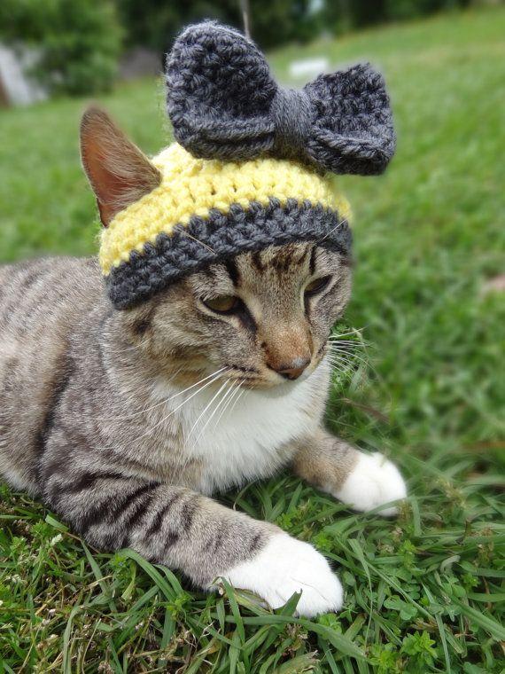 benutzerdefinierte hut f r katzen katzen bonnet sonnenschein und zinn hat f r kleine hunde. Black Bedroom Furniture Sets. Home Design Ideas