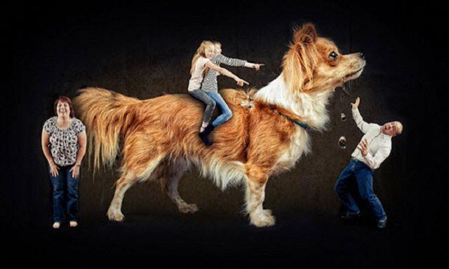Weird Family Photos With Dogs 8