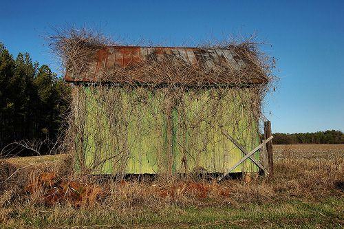 Old Green Barn Ogeechee, GA
