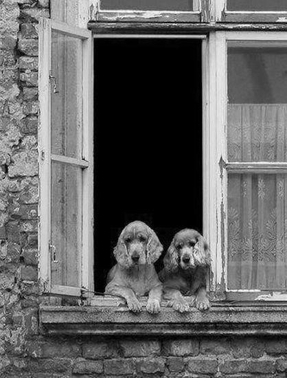 ♔ Best friends ~ Paris