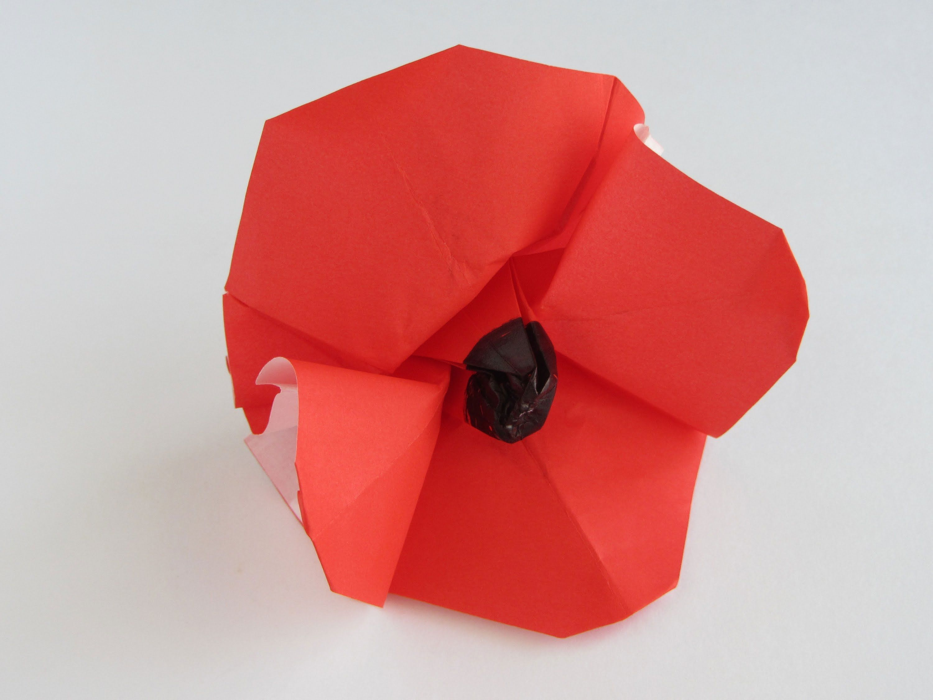 Origami Poppy Origami Pinterest Origami And Crafts