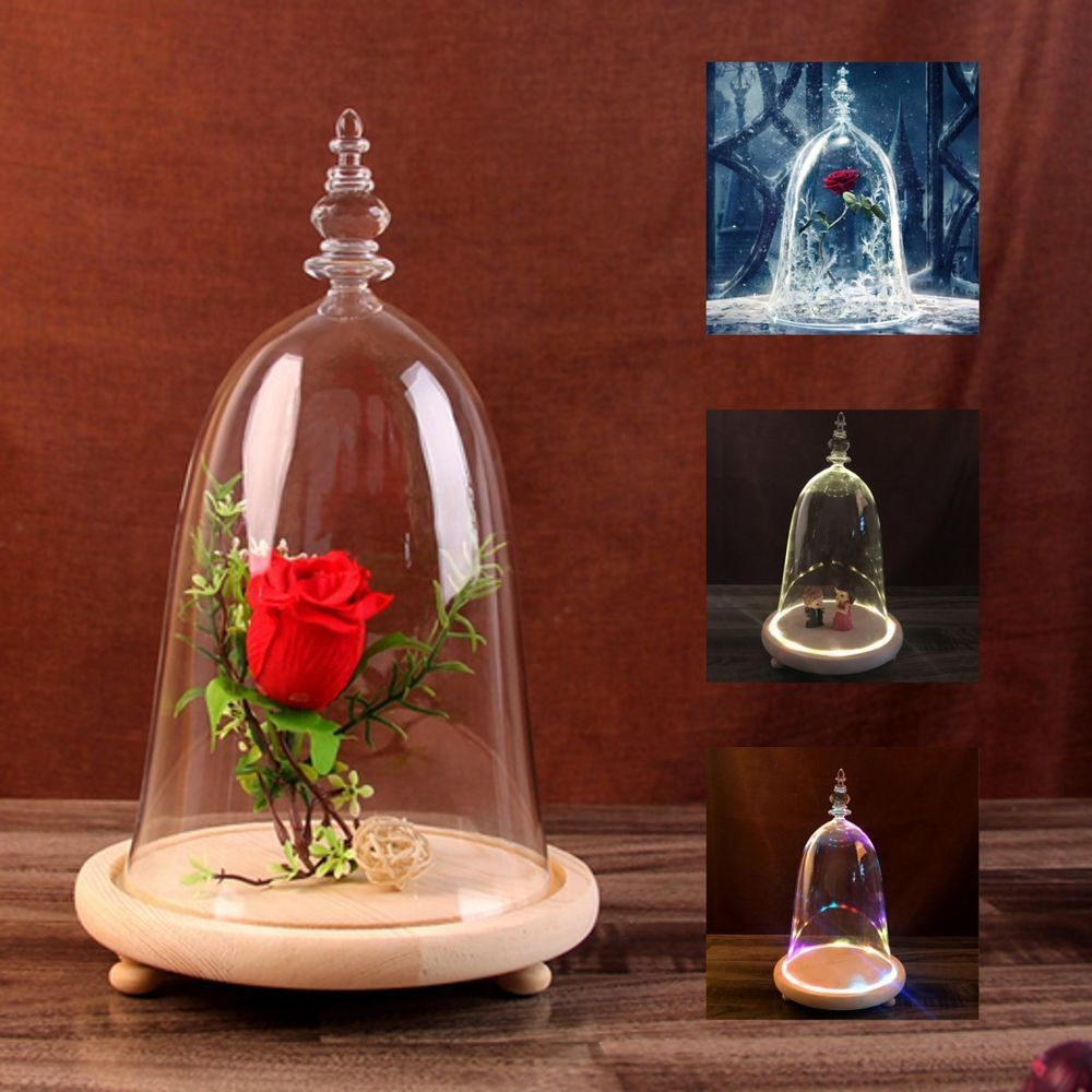 Clear Glass Cloche Display-Jar Bell Flower Preservation Vase Dome Bottle w// Base
