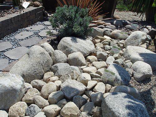 Colorado river rock creek bed paver path set in mexican for Landscaping rocks austin