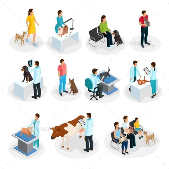 Isometric Veterinary Clinic Set (With images) Veterinary