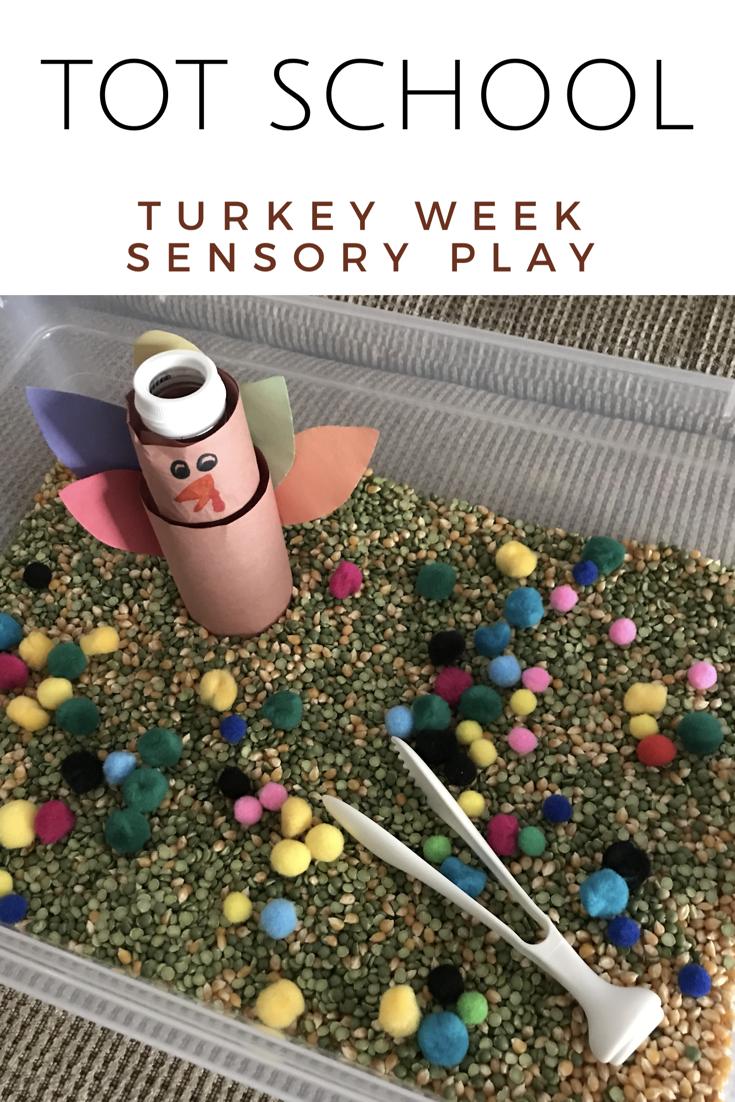 Feed the Turkey Sensory Play Tot school, Toddler